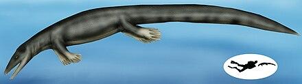 Vallecillosaurus