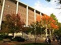 Van Pelt-Dietrich Library Center - IMG 6590.JPG