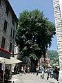 Vence Place Du Frene - panoramio.jpg