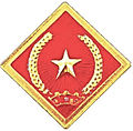 Vietnam Civil Defense Force insignia.jpg