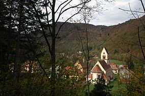 View of Mittlach, Haut-Rhin.jpg