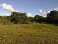 Vlakte van Waalsdorp (Waalsdorpervlakte) 2016-08-10 img. 514.png
