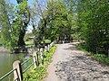 Vyžlovský rybník (005).jpg