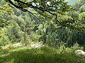 Vyhľiadka - panoramio (1).jpg