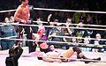 WWE Smackdown Wrestlemania Revenge (8662060802).jpg