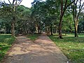 Walkway in the Suhrawardy Udyan, Dhaka .jpg