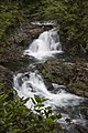 Wallace Falls State Park — Lower Wallace Falls, part 1.jpg