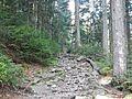 Wanderweg - panoramio (45).jpg