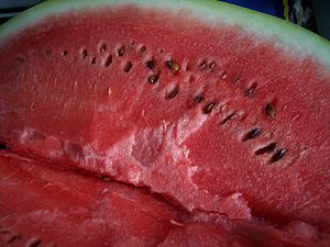 (Watermelon) Citrullus lanatus