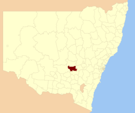 Weddin LGA NSW.png