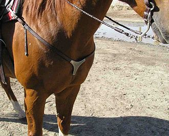 Breastplate (tack) - A western style breastplate, usually referred to as a breast collar