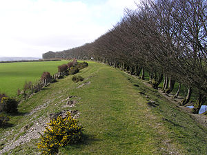 Embankment (transportation) - Disbanded West Somerset Mineral Railway embankment near Gupworthy, UK