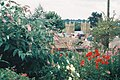 Wimborne model town, large flowers, small church - geograph.org.uk - 540028.jpg