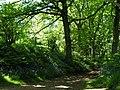 Woodland path - Hanchurch Hills - geograph.org.uk - 55053.jpg
