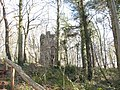 Y Twr -The Tower - a folly in Coed Twr - geograph.org.uk - 366240.jpg