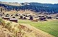 Yalnızçamdağları 09 1984 Yayla östlich Şavşat am Übergang auf die Ardahan Yaylası.jpg
