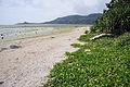 Yubu Island Okinawa Pref Japan12bs4592.jpg