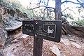 Zion National Park (15186283129).jpg
