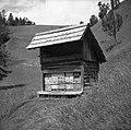 """Čvevənk"" (čebelnjak). Podlanišče 1954.jpg"
