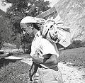 """""""V škufo"""" nese sol s skuto. Rjuho se naredi v škufo, na hrbtu se podloži (v rjuho seno ali jopo), Soča 1952 (2).jpg"""