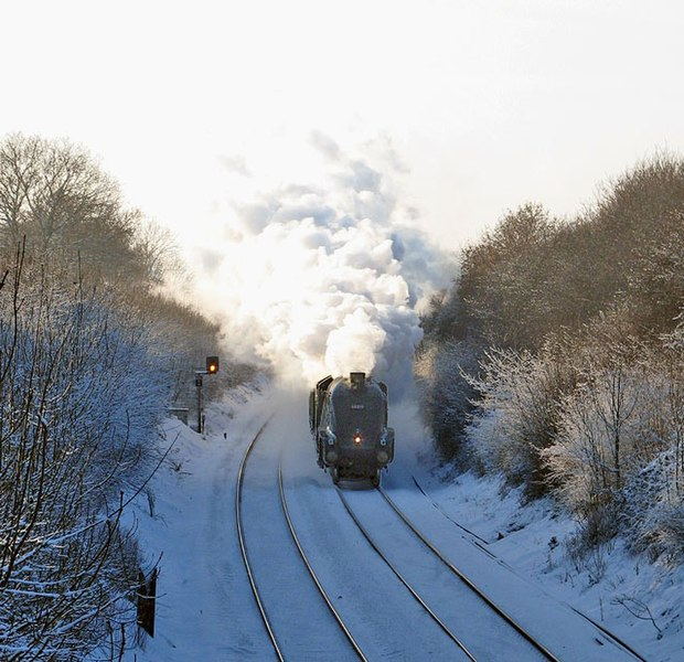 File:'Bittern' on the Cathedrals Express Carol Concert Special - geograph.org.uk - 1625923.jpg