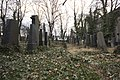 Židovský hřbitov Malvazinky, 23.jpg