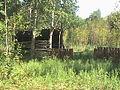 Ірдинське болото18.JPG