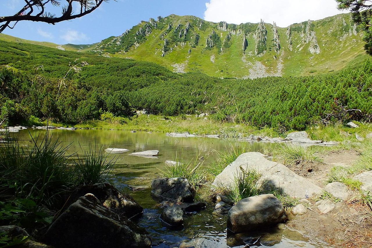 Протічне безіменне озерце під горою Шпиці