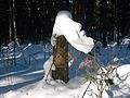 Быковка.Зимой в лесу - panoramio.jpg