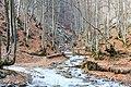 Біля водоспаду Шипот - panoramio.jpg