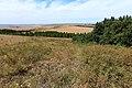 Вид на Башкирию с Волчьих гор - panoramio.jpg