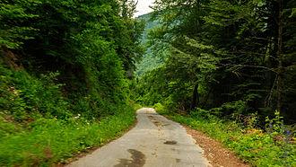 Upper Reka - Road to Beličica village
