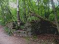 Развалины финского дома.jpg