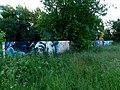 Разрисованная стена в Петропавловском парке - panoramio.jpg