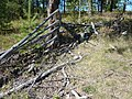 Старый забор - panoramio.jpg