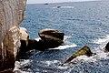 סלעים בים.jpg