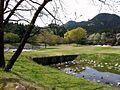 いたが せせらぎブール 2011年春 - panoramio.jpg