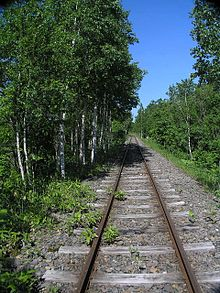 Colour photograph of railroad tracks disappearing into the distance with trees on each side.