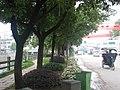 仙岩街头 - panoramio.jpg