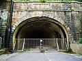 仙洞隧道.jpg