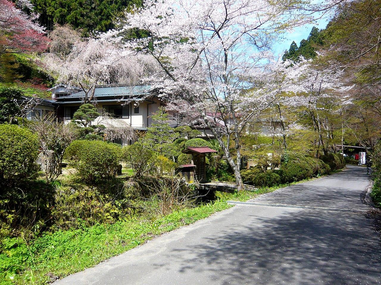 吉野温泉元湯 Yoshino-onsen 2010.4.08 - panoramio.jpg