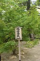 福禄寿天 (38360463694).jpg