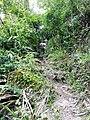 高州深镇自然保护区附近的瀑布潭子20140614 - panoramio (3).jpg