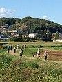 鳩山町.jpg