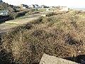 -2021-01-12 Mundesley Coastal Battery, Mundesley, Norfolk (5).JPG