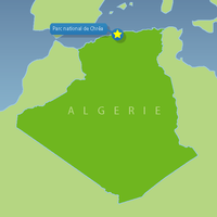 0103 GM Algerian National Parks Chrea National Park 01.png