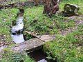 026 Plougastel Ruisseau et fontaine près chapelle Saint-Guénolé.JPG