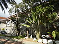 0422jfSanto Niño Barasoain Church Garden Malolos City Bulacanfvf 10.JPG