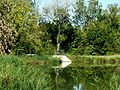 1048 - Canal de Charras écluse de la Tête de Loup - Breuil-Magné.jpg