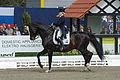 13-04-21-Horses-and-Dreams-Elena-Sidneva (12 von 21).jpg